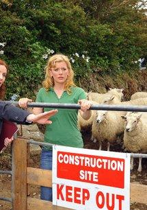 Unsere Farm in Irland: Rätselraten