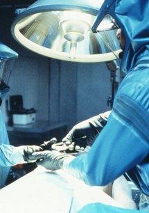 Virus X - Die tödliche Falle