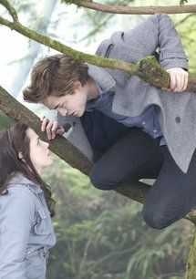 Twilight / Twilight Saga: Eclipse / Twilight Saga: New Moon