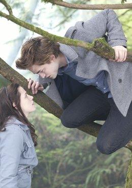 Twilight / Twilight Saga: Eclipse / Twilight Saga: New Moon