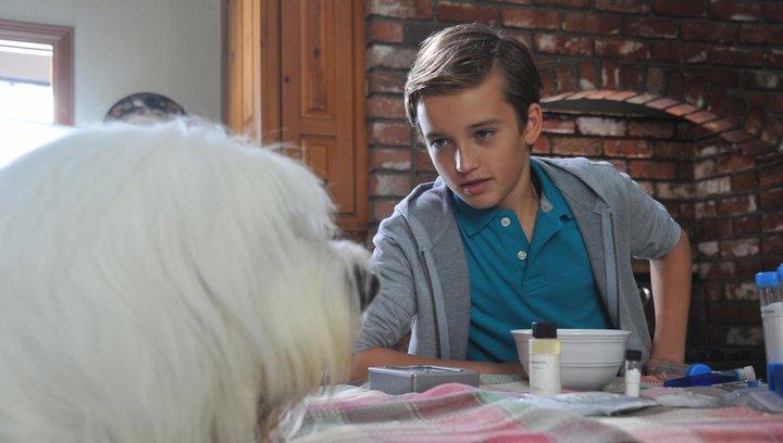 Albert - Der unsichtbare Hund (DVD-Trailer) Poster