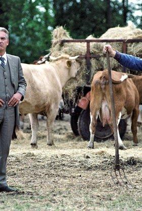 Allein unter Bauern (1. Staffel, 10 Folgen)