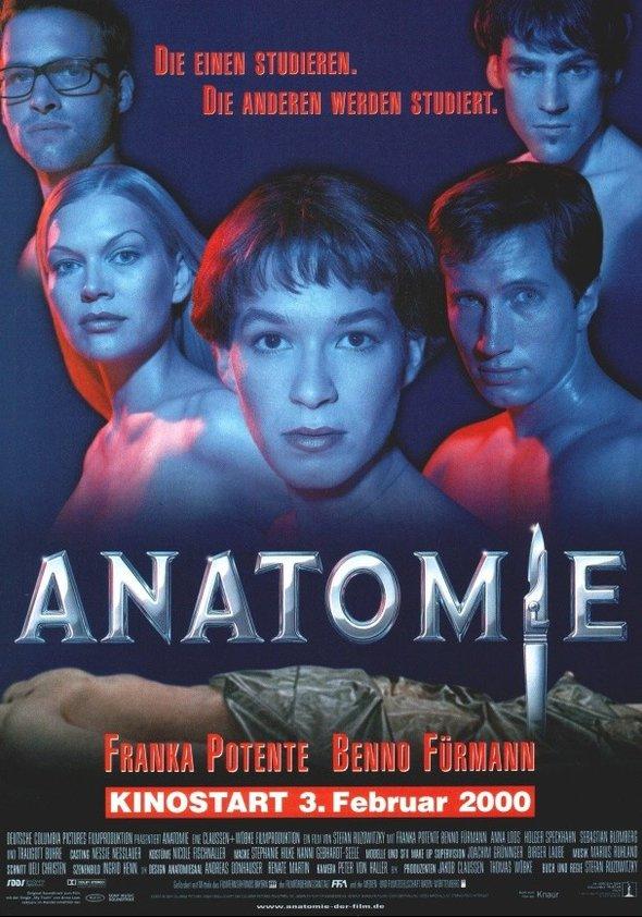 Anatomie Poster