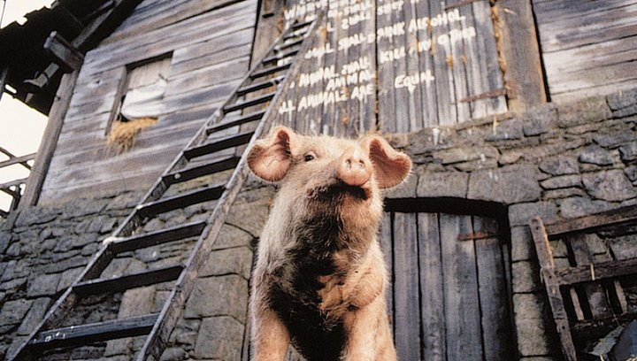 Animal Farm - Trailer Poster