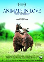 Animals in Love Poster