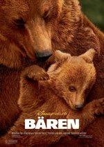 Bären Poster