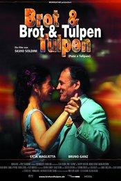 Brot &amp&#x3B; Tulpen