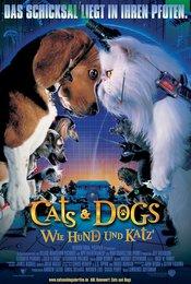 Cats &amp&#x3B; Dogs - Wie Hund und Katz