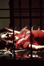 Criminal Instinct - Liebe bis in den Tod