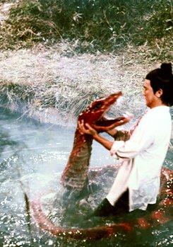 Das Blut der roten Python