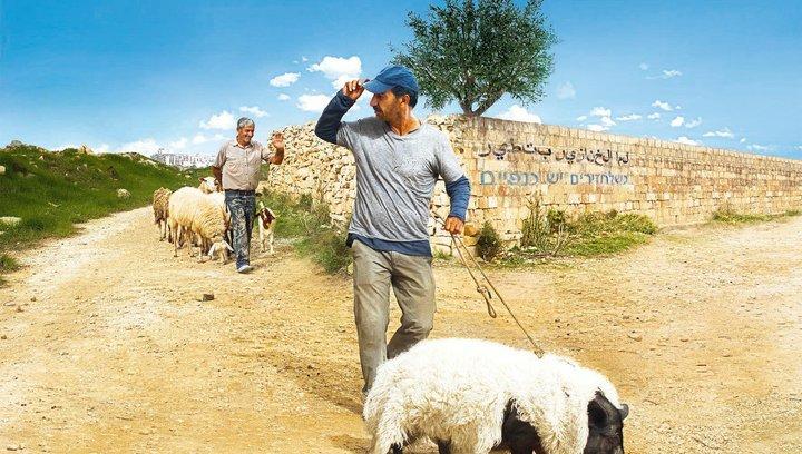 Das Schwein von Gaza - Trailer Poster