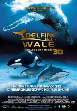Delfine und Wale 3D Poster