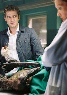 Der Elefant - Mord verjährt nie (2. Staffel, 13 Folgen) Poster