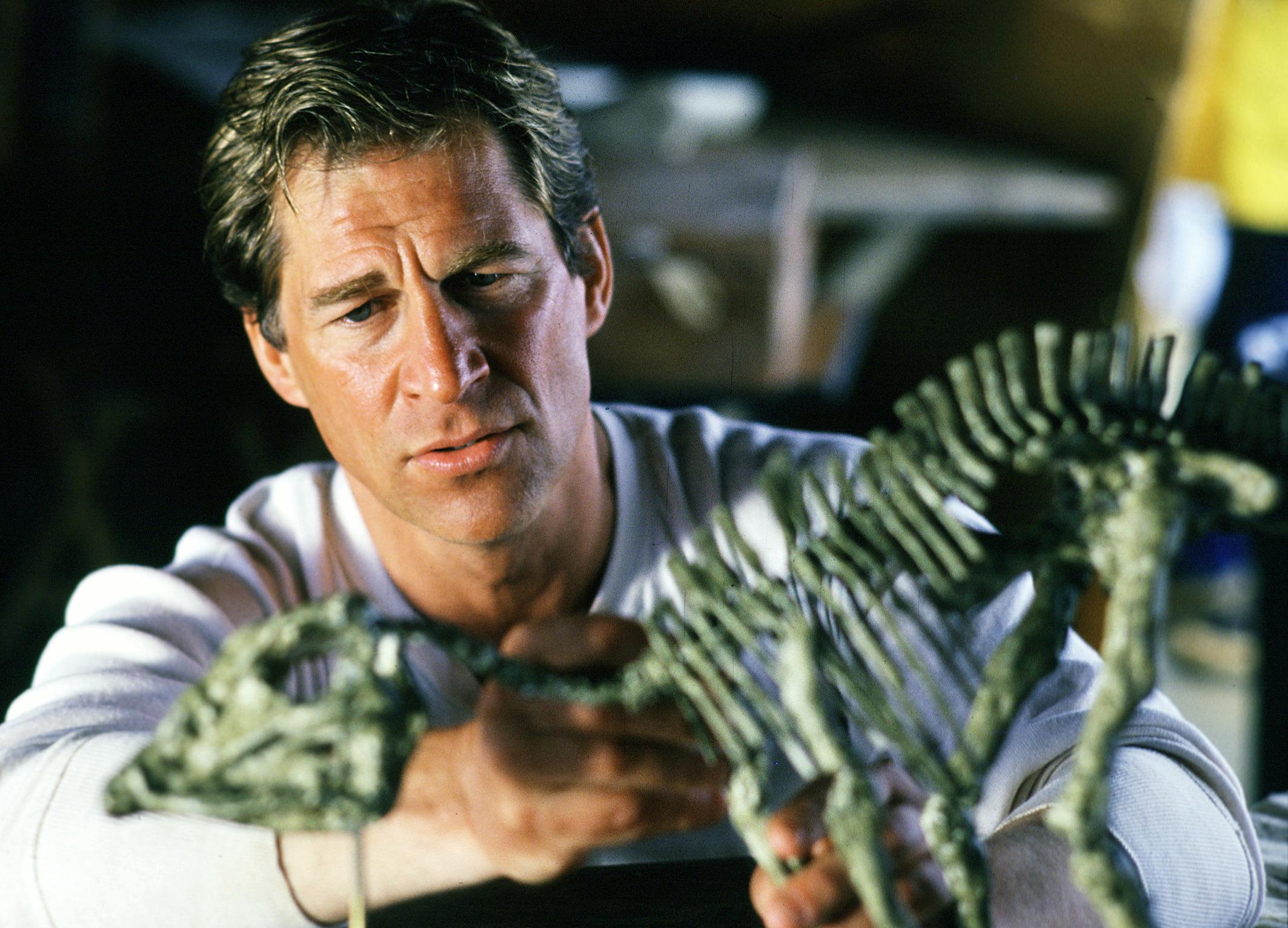 Der Schatz der Dinosaurier