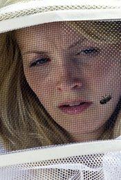 Die Bienen - Tödliche Bedrohung