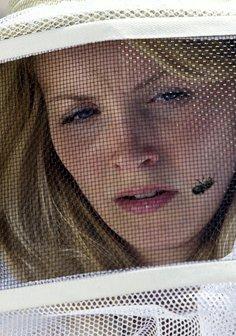 Die Bienen - Tödliche Bedrohung Poster
