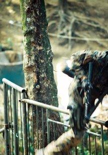 Die Jagd auf Eagle One: Crash Point