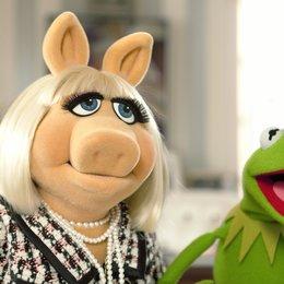 Die Muppets - Trailer Poster
