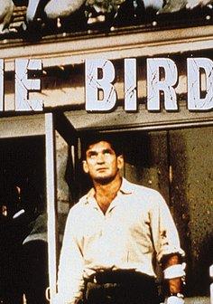 Die Vögel Poster