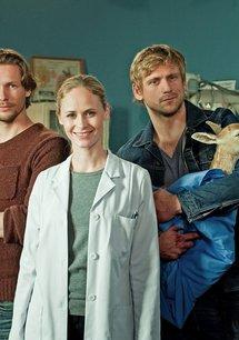 Doc meets Dorf (1. Staffel, 8 Folgen)