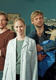 Doc meets Dorf (1. Staffel, 8 Folgen) Poster