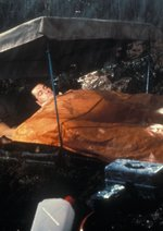 Ein Goldfisch an der Leine Poster