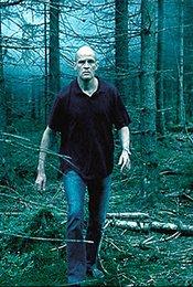 Ein Schrei in den Wäldern