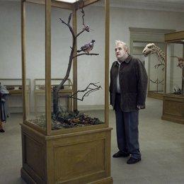 Eine Taube sitzt auf einem Zweig und denkt über das Leben nach - Trailer Poster