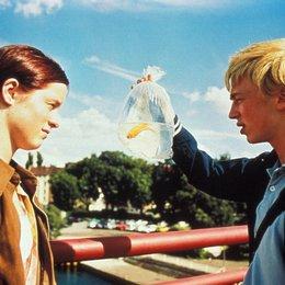 Fickende Fische - Trailer Poster