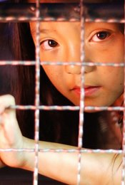 Frauenhandel - Kampf gegen das Kartell