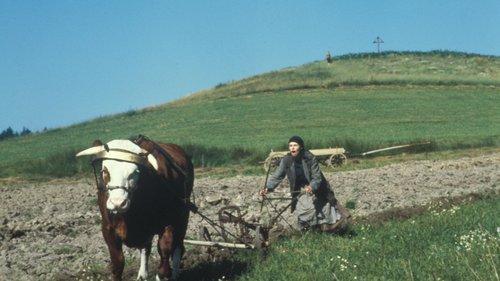 Herbstmilch Film 1989 Trailer Kritik Kino De