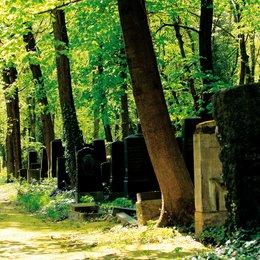 Im Himmel, Unter der Erde - Der Jüdische Friedhof Weißensee - Trailer Poster