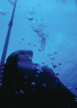 Im Rausch der Tiefe - The Big Blue Poster