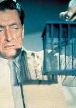 James Bond 007 jagt Dr. No Poster