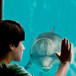 Mein Freund, der Delfin - Trailer Poster