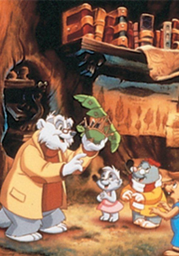 Meister Dachs und seine Freunde Poster