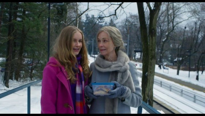 The Visit - Trailer Poster