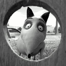 Frankenweenie (BluRay-/DVD-Trailer) Poster