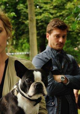 Josephine Klick - Allein unter Cops (2. Staffel, 6 Folgen)
