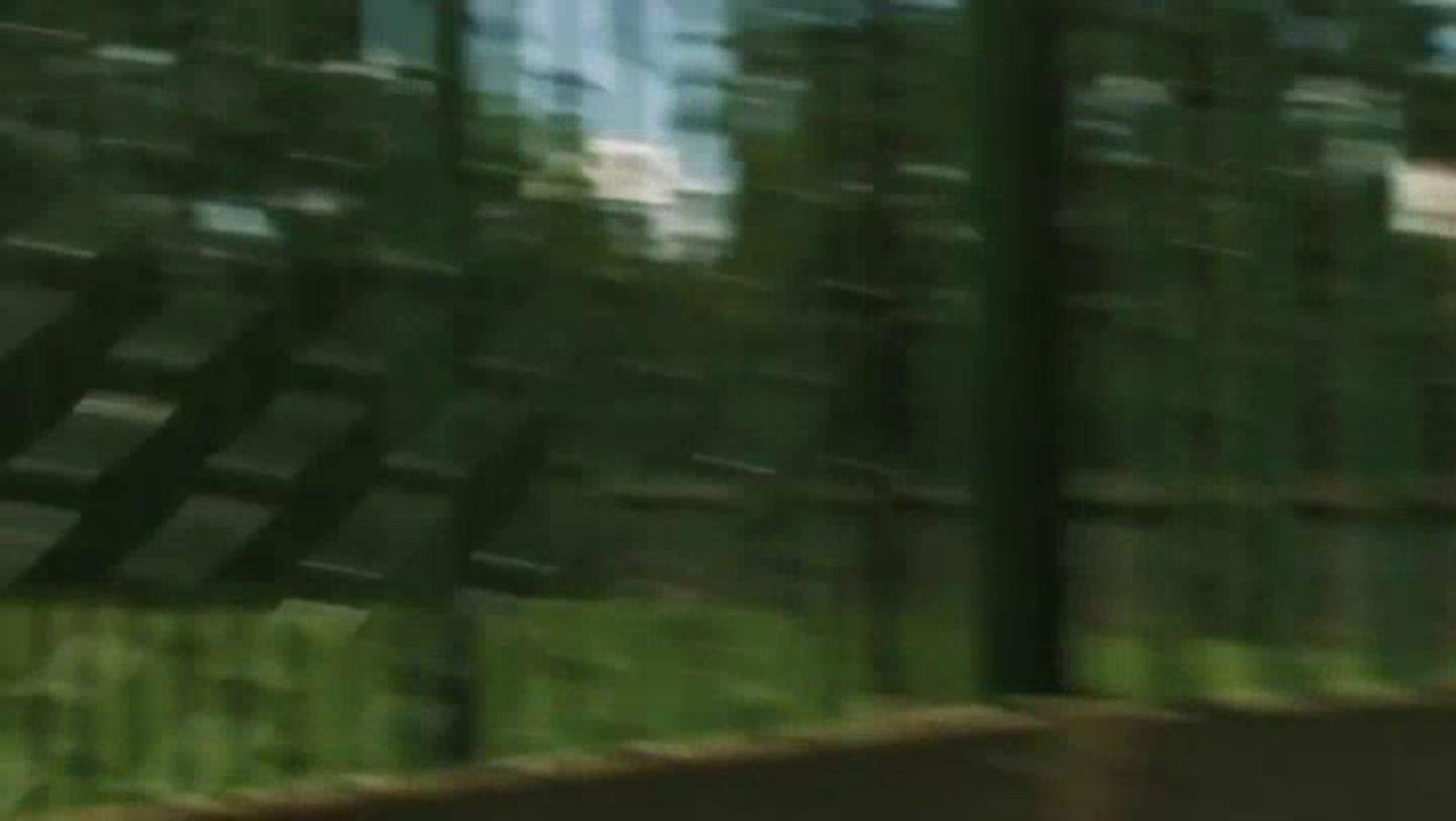 The dead inside - das böse vergisst nie trailer