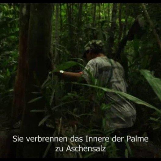 Im brasilianischen Regenwald - Szene
