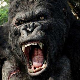 """""""Kong Skull Island"""": Erstes Foto zeigt, warum der Film seinen Namen trägt"""