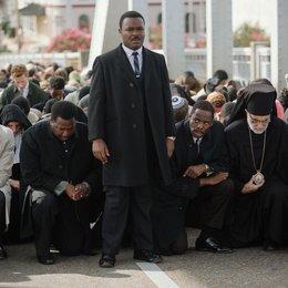 Selma - Trailer Poster
