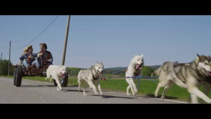 Schlittenhundefahrt - Szene Poster