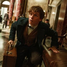 """Fantastic Beasts"": Neues Video zum Harry-Potter-Spin-Off zeigt erstmals Colin Farrell"
