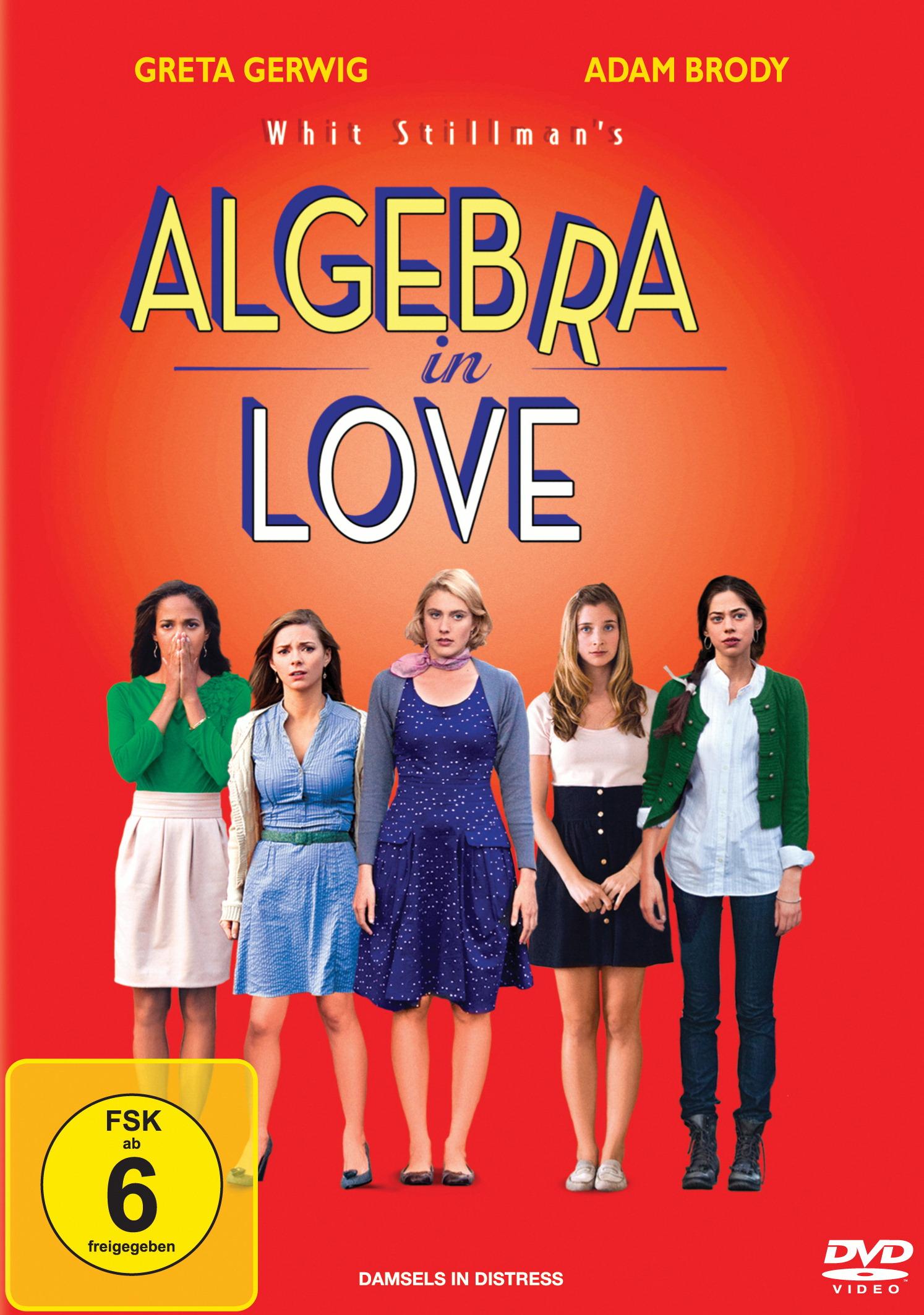 Algebra in Love Poster