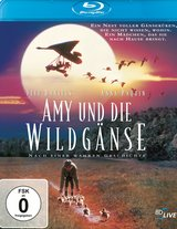 Amy und die Wildgänse Poster