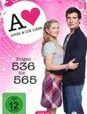 Anna und die Liebe - Box 19, Folgen 536 - 565 (4 Discs) Poster