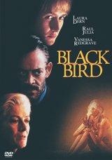 Black Bird Poster