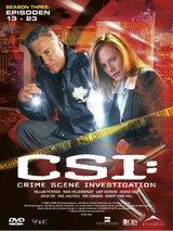 CSI: Crime Scene Investigation - Season 3.2 (3 DVDs) Poster
